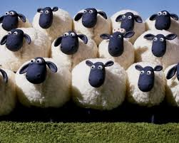 Listen up Sheeple!